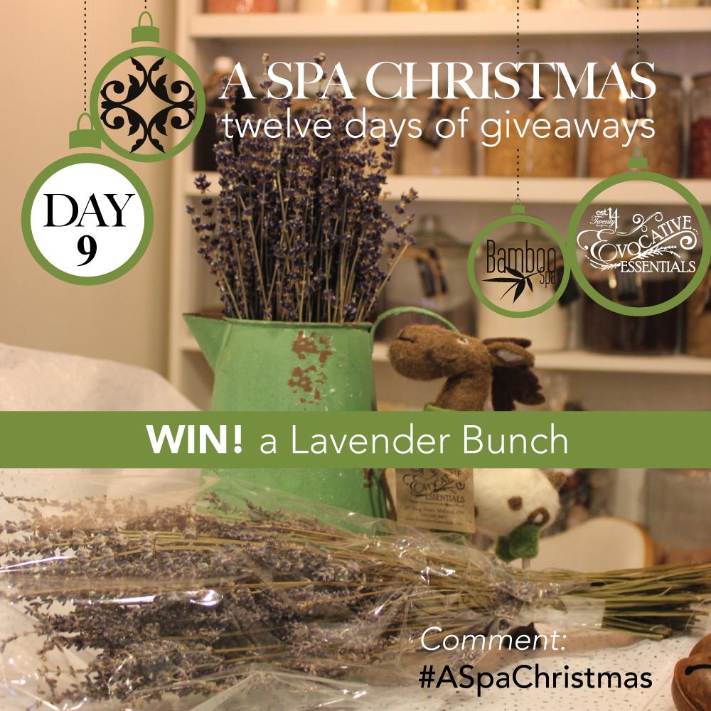 aSpaChristmas-Day-9-LavenderBunch